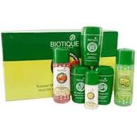 BIOTIQUE BOTANICALS, Биотик Производители аюрведических препаратов и аюрведической косметики - 3