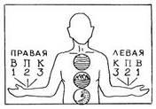 Пульсовая диагностика