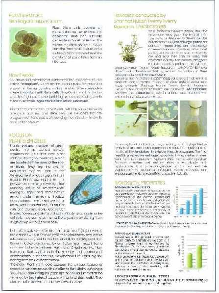 Аюрведа Стволовые клетки растений