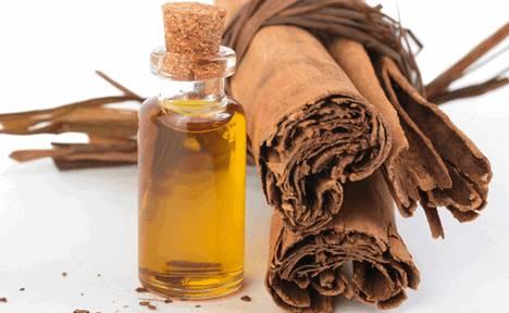фирное масло корицы (коричное масло) получается после измельчения коры, вымачивания ее в морской воде и последующей быстрой водяной или паровой перегонки настоя.