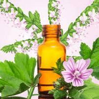 Масло пачули широко применяется в косметологии и в парфюмерии.