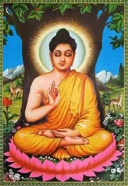 Саловое дерево является священным для буддизма. В буддизме считается, что королева Майя родила Гаутама Будду под саловым деревом в саду Лумбини в Южном Непале, держась за его ветку.
