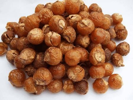 Мыльный орех (sapindus mukorossi)