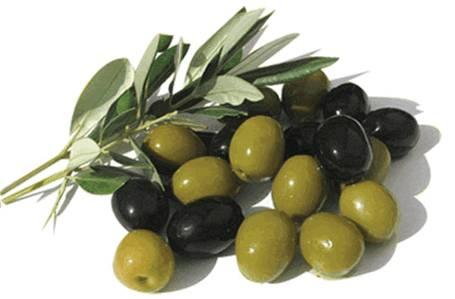Плоды оливы удлиненно-овальной формы, с косточкой, различной окраски в зависимости от сорта дерева — зеленые, черные, темно-фиолетовые.