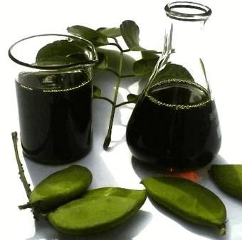 Понгамовое масло получают из семян путем холодного отжима. Имеет красно-коричневый цвет в нерафинированном виде и золотистый цвет в рафинированном виде. Вкус горький, аромат неприятный.