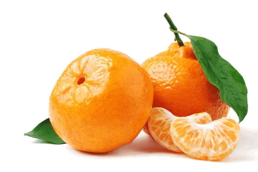 Мандарин, citrus reticulata (лат), tangerine, mandarin (англ)