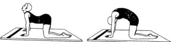 Марджариасана (поза потягивающегося кота)