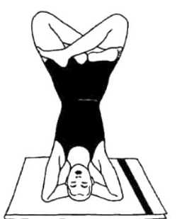 Урдхва-падмасана (стойка на голове с ногами в позе лотоса)