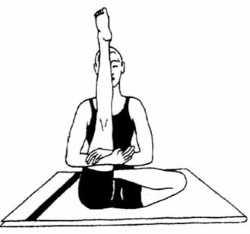 Ардха-падма-падоттанасана (поза полулотоса с поднятой ногой)