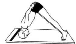 Бхумипада-мастакасана (полустойка на голове)