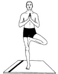 Асаны, развивающие равновесие