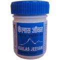 Аюрведа для пищеварительной системы Каилас - кайлас дживан (Kailas jeevan), 60 грамм