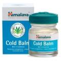 Аюрведа при простудных заболеваниях Бальзам от простуды, 10 гр