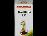 BAIDYANATH Камдудха Рас (Kamdudha Ras) 10гр