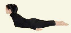 Упражнение на укрепление мышц спины