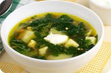 Свежая зелень зеленый суп