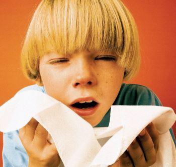 Сезон гриппа: все силы на укрепление иммунитета!