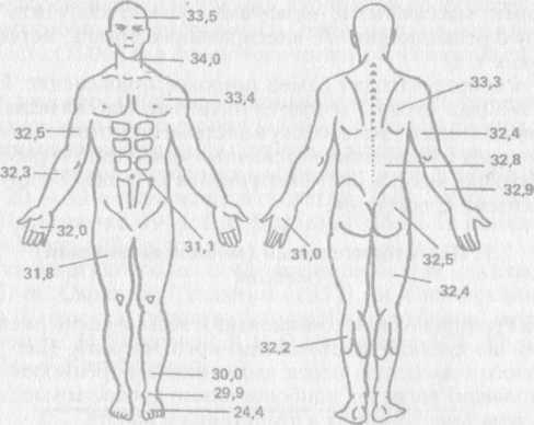 Виды спортивного массажа