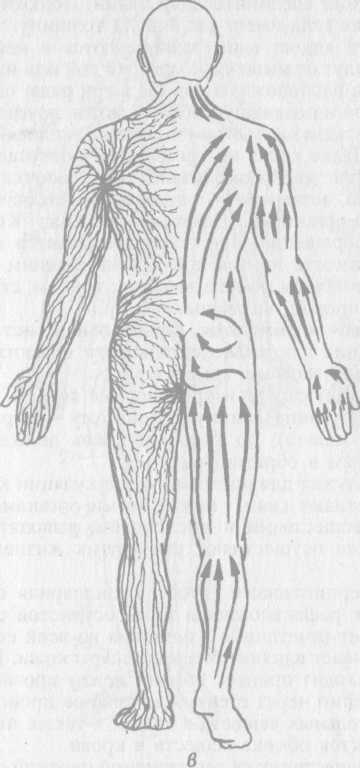 Физиологические основы массажа