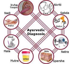 Аюрведическая диагностика